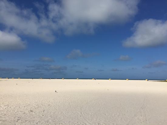 Thunderbird Beach Resort: photo4.jpg