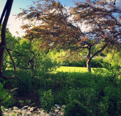 Ogden Botanical Gardens