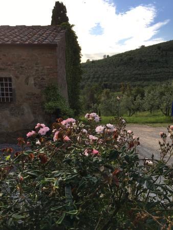 Relais Villa Belpoggio: photo3.jpg