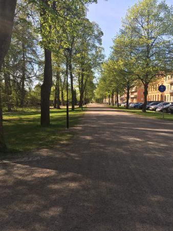 Ουψάλα, Σουηδία: photo7.jpg