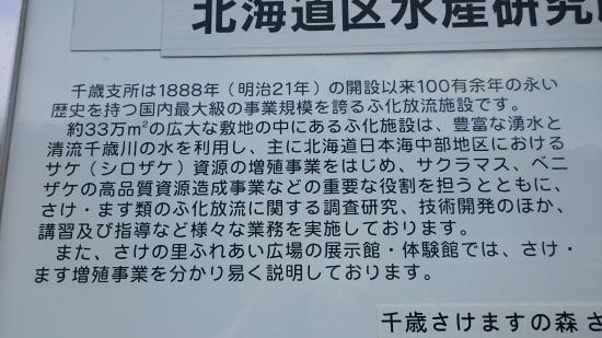 Sake no Sato Fureai Hiroba: さけの里ふれあい広場