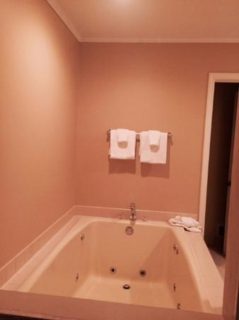 Bellaire, MI: Big jacuzzi in master bedroom