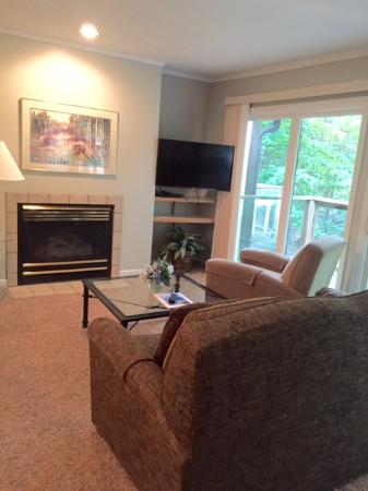 Bellaire, MI: Room 105 has flat screen tv and gas fireplace