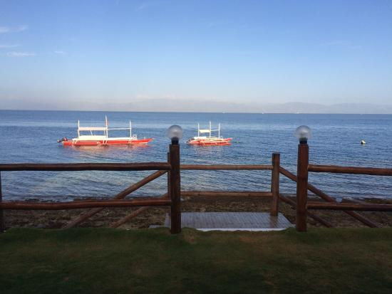 Il Sogno: View from the deck in the morning