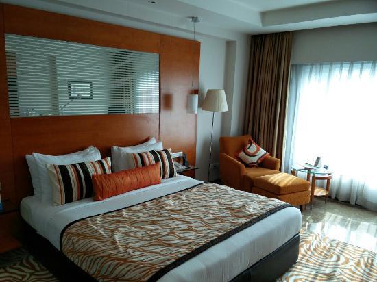Radisson Blu Hotel Ahmedabad: IMG_20160120_102643_large.jpg