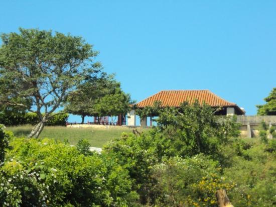 Isla Tierra Bomba, كولومبيا: hacia lo alto