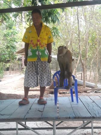 Bophut, Thailand: 20160528_180226_large.jpg