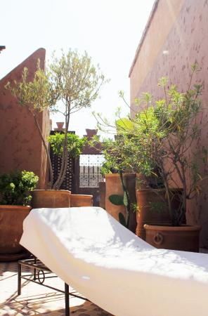 Riad Assaada: Roof Terrace