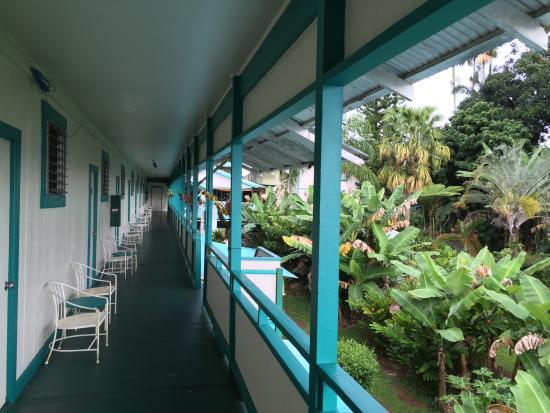 Wild Ginger Inn Hotel & Hostel: Upstair Hallway