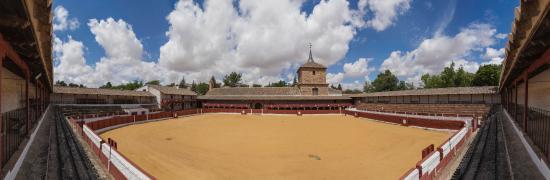 Santa Cruz De Mudela, Spanien: Plaza de toros cuadrada. Poblado de Las Virtudes