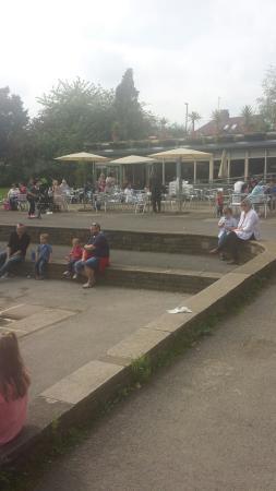 Millhouses Park: FB_IMG_1464442740668_large.jpg