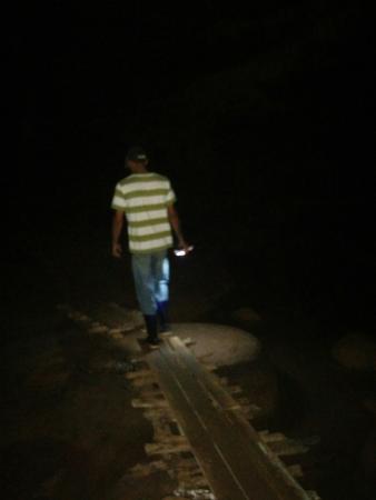 Cueva del Palmarito
