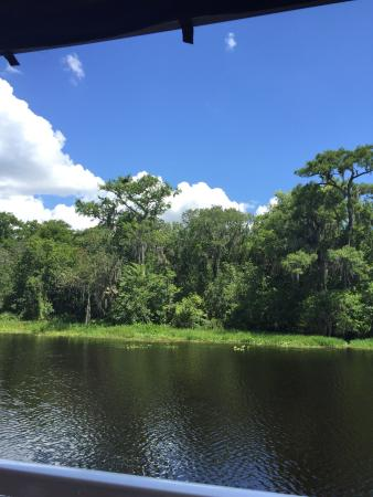 DeLand, FL: Blue Heron River Tours