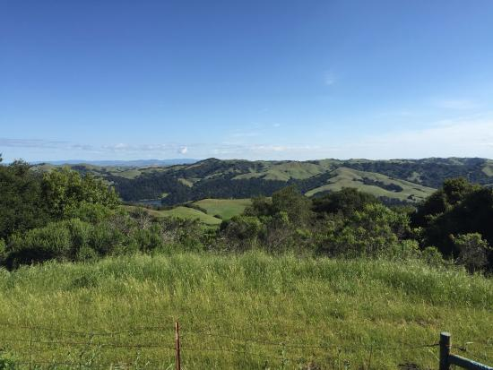 Berkeley, CA: vista from the trail