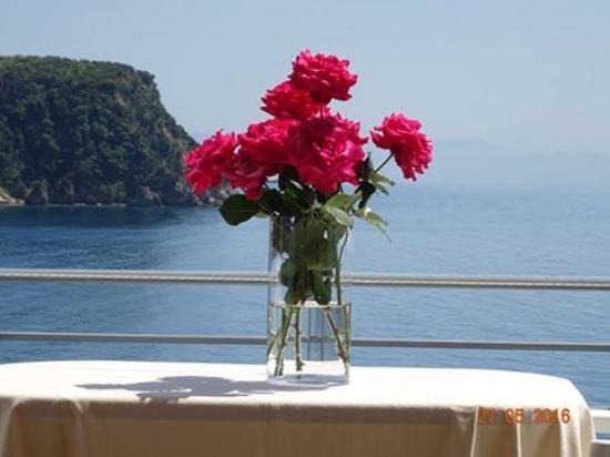 Foto de Ionian View Hotel