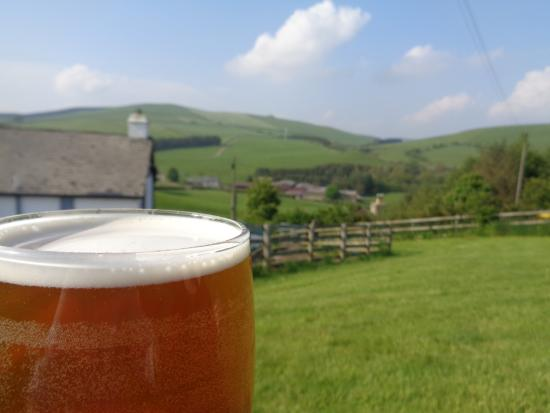 New Radnor, UK: Good beer at The Fforest Inn