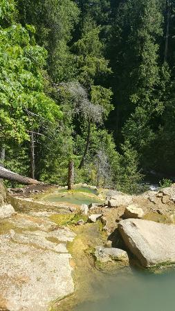 Umpqua Hot Springs照片