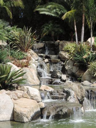 Fallbrook, CA: Waterfall