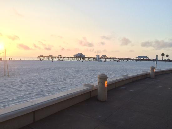 Tripadvisor Gulfview Hotel Clearwater Beach