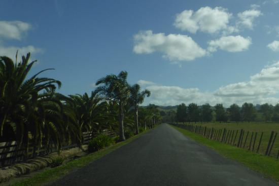Thames, Nueva Zelanda: Approaching the Holiday Park