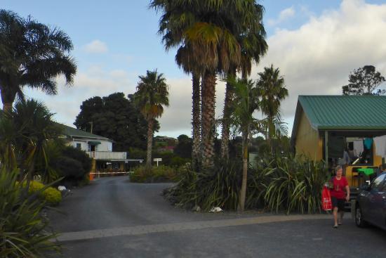Thames, Nueva Zelanda: In the Holiday park