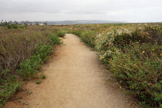 Imperial Beach, CA: trail