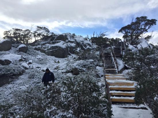 Charlottes Pass, أستراليا: photo1.jpg
