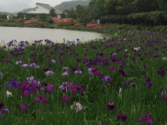 Nanrakuen Garden: photo2.jpg