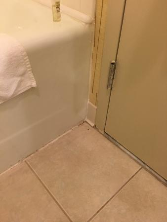 Holiday Inn Hartford Downtown Area: Bathroom could be cleaner