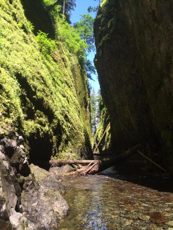 Cascade Locks, OR: sun shining through gorge