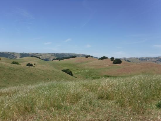 Fremont, CA: Rolling hillside view