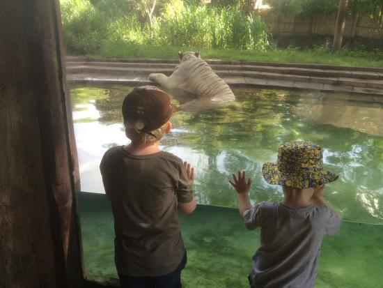 Mara River Safari Lodge: photo1.jpg