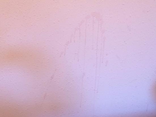 Macchia sul muro della camera