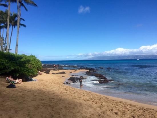 Napili Surf Beach Resort: photo5.jpg