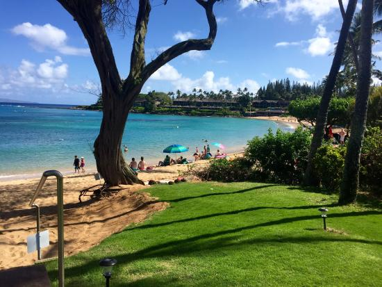 Napili Surf Beach Resort: photo6.jpg