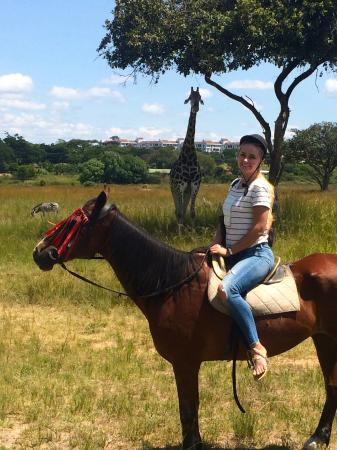 Mukuvisi Woodlands: Horse ride for 35$