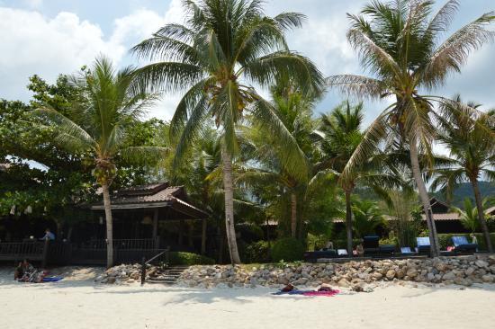 Salad Hut Bungalows: Resto - piscine - plage