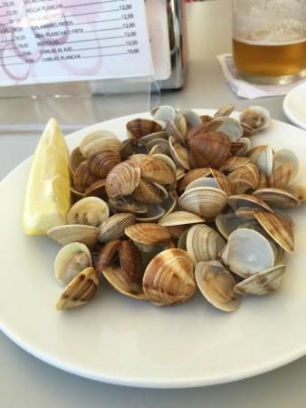 Roquetas de mar tapas