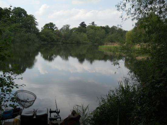 Pattingham, UK: Lady Brabara pool for coarse fishing for hotel guests and season tickets