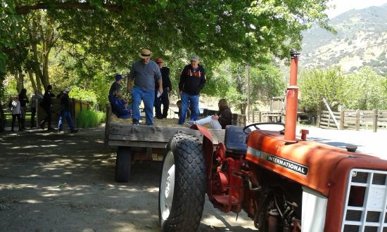 Caliente, CA: Sunday's hayride to the bbq