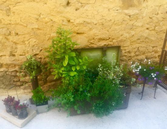 Les Chambres de la Voie Verte : photo1.jpg