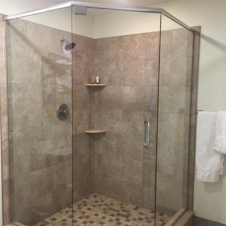 Stanwood, MI: Spacious shower, with waterfall showerhead
