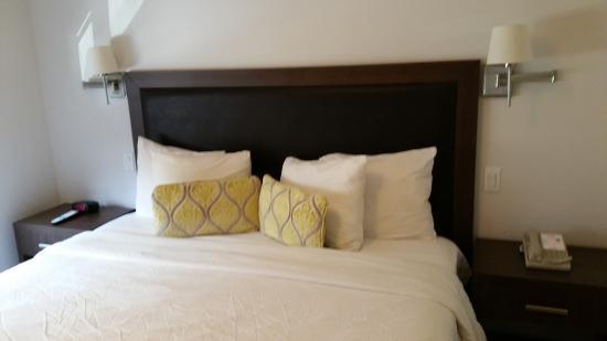 Bilde fra Collins Hotel