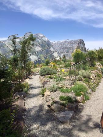 Botanical Garden (Botanischer Garten): photo1.jpg