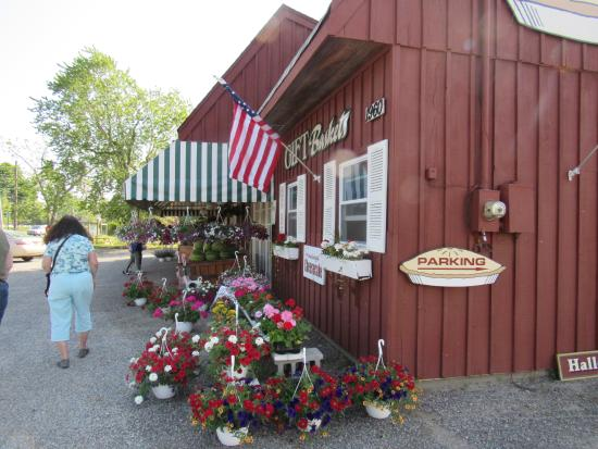 Laurel, NY: Great bakery and farm stand