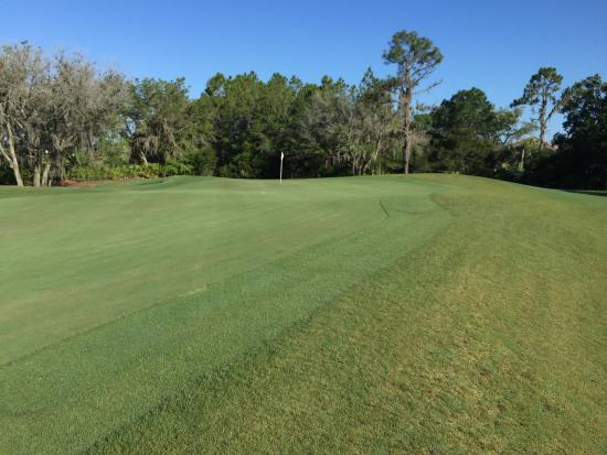 Lakewood Ranch, FL: Esplanade Golf & Country Club