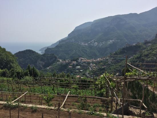 Villa Amore: photo1.jpg
