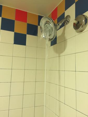 Disney's Coronado Springs Resort : This is full pressure in the shower. Even after calling to complain, it was never fixed. AC filt