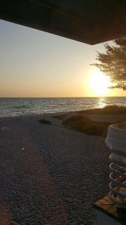 Gulf Tides of Longboat Key: FB_IMG_1463874420438_large.jpg