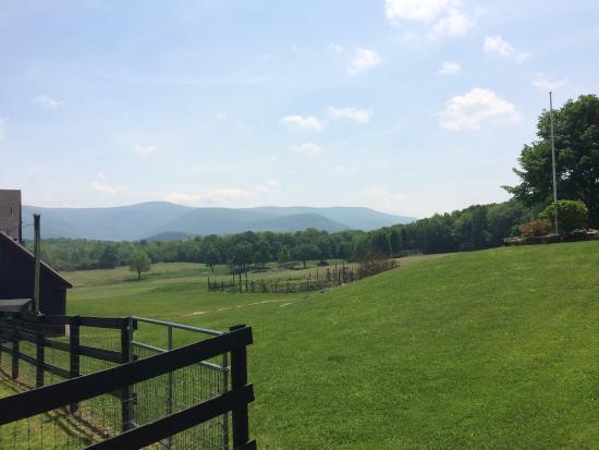 Sweet Brook Farm: photo1.jpg
